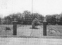 Description: Okolona Confederate Cemetery